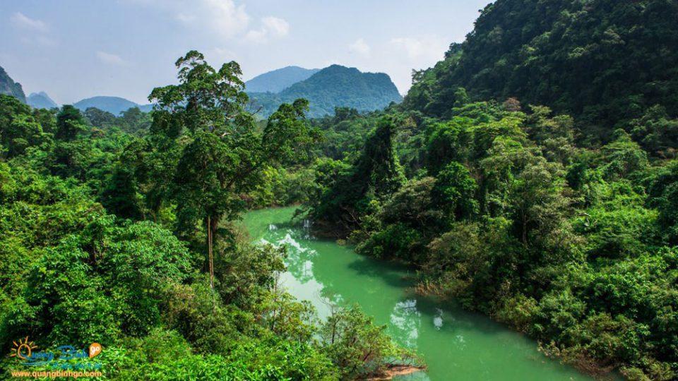 Vườn thực vật - Thác Gió, Phong Nha - Kẻ Bàng - Du lịch Quảng Bình - Quảng Bình go 0