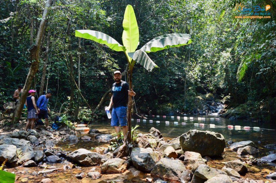 Vườn thực vật - Thác Gió, Phong Nha - Kẻ Bàng - Du lịch Quảng Bình - Quảng Bình go 20