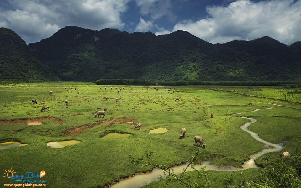 Phong Nha - Kẻ Bàng khu du lịch Quốc gia