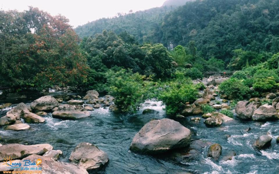 Suối nước Moọc Phong Nha Kẻ Bàng