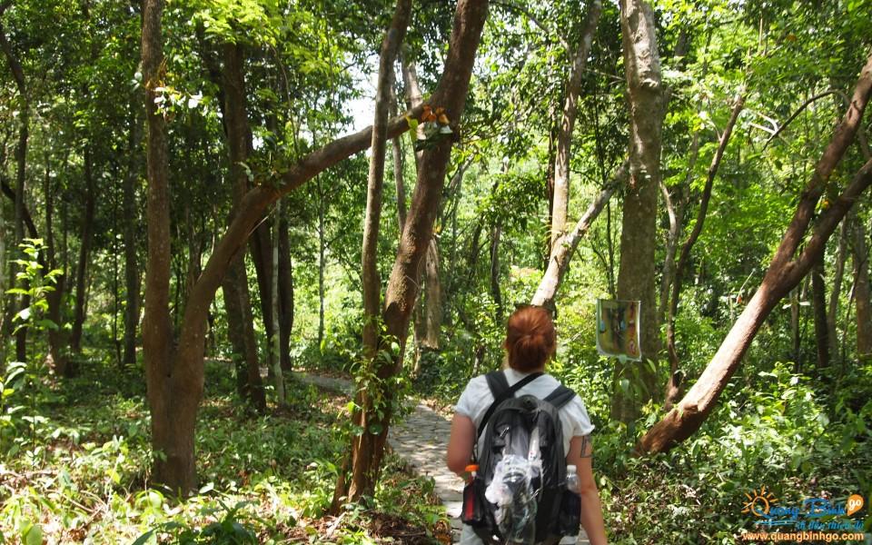 Vườn thực vật Phong Nha, Quảng Bình
