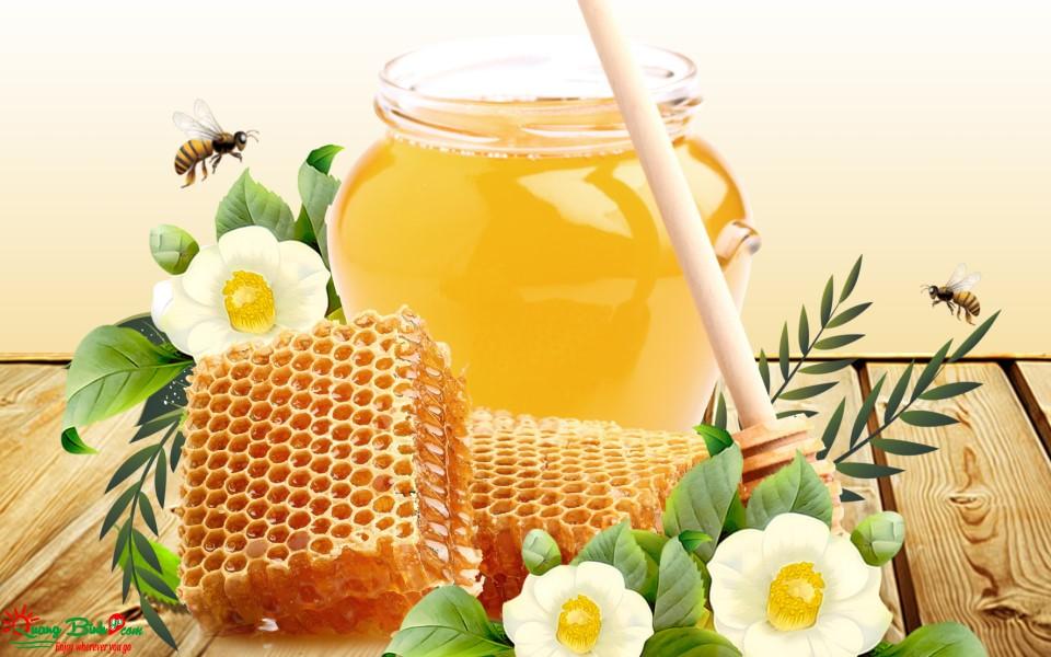 Mật ong rừng Phong Nha chất lượng