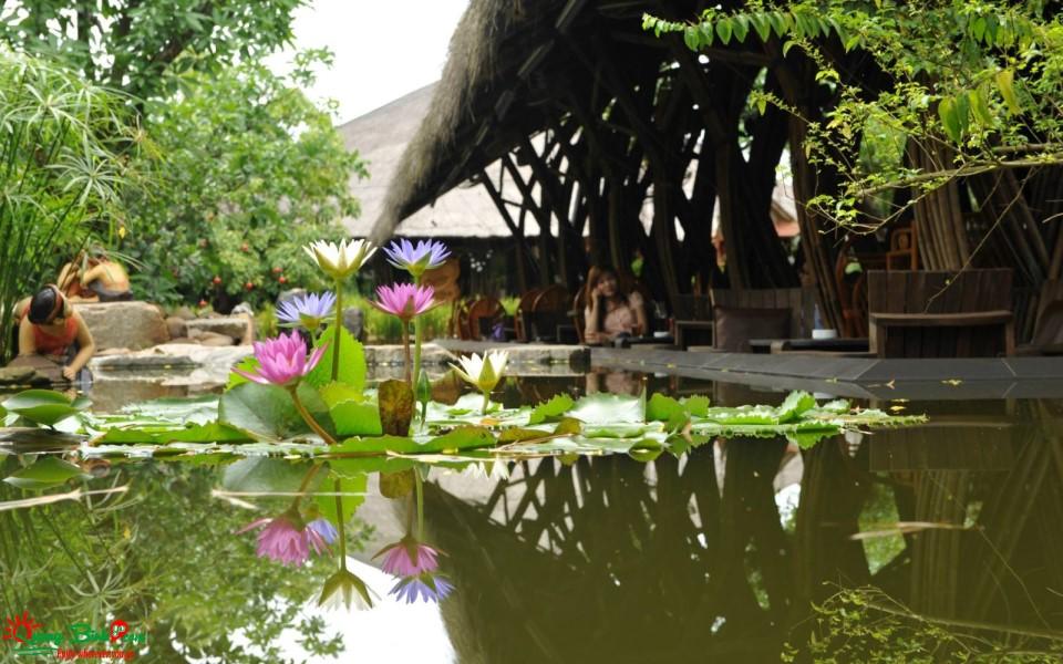 Quán cafe Coco's Đồng Hới, Quảng Bình mê ly