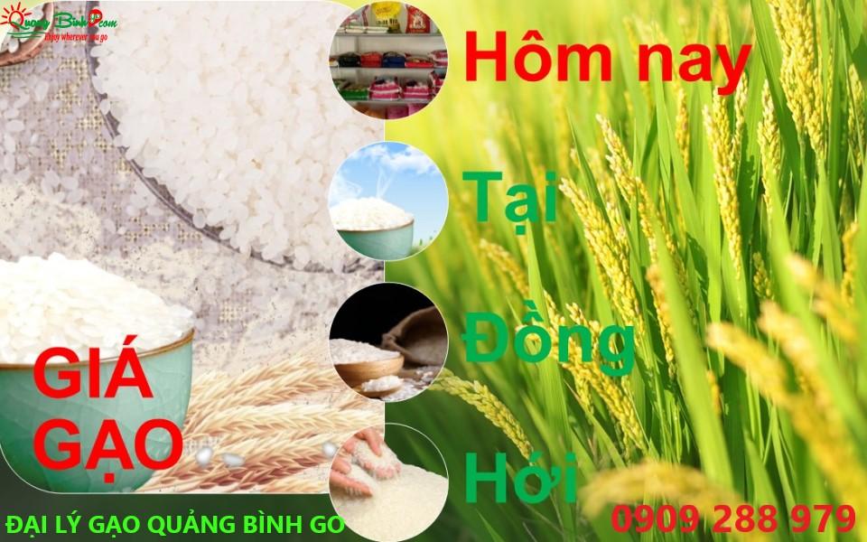 Giá gạo ở Đồng Hới tại đại lý Quảng Bình GO